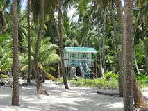 Belize Cayes Palm trees & bungalow Royalty Free Stock Photos