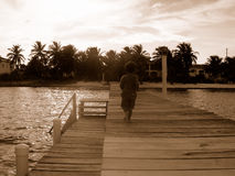 belize dock Arkivfoto