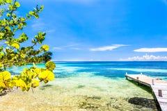 Belize, een tropisch paradijs in Midden-Amerika royalty-vrije stock fotografie