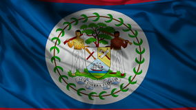 Belize flag stock video footage