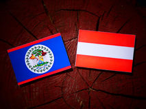 Belize flag with Austrian flag on a tree stump  Stock Image