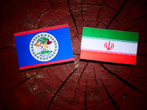 Belize flag with Iranian flag on a tree stump isolated Stock Images
