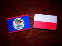 Belize flag with Polish flag on a tree stump isolated. Belize flag with Polish flag on a tree stump stock illustration