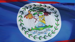 Belize flag in slow motion seamlessly looped with alpha stock video footage