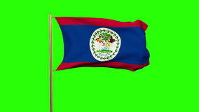 Belize flag waving in the wind. Green screen stock video
