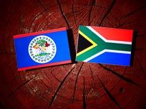 Belize flaga z południe - afrykanin flaga na drzewnym fiszorku odizolowywającym Obrazy Stock