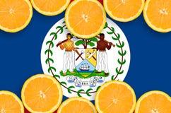 Belize flagga i citrusfruktskivahorisontalram arkivbild