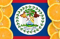 Belize flagga i vertikal ram för citrusfruktskivor fotografering för bildbyråer