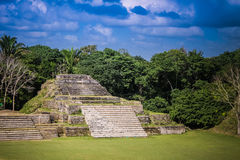 Belize Mayan Civilization. Altun Ha Belize ruins in the island of Belize royalty free stock photography