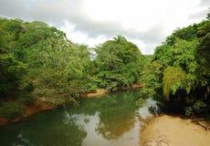 belize rzeka Zdjęcia Royalty Free