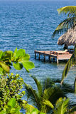 Belize, tropical  beach Royalty Free Stock Photos