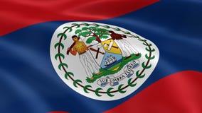 Belizean flag in the wind stock video footage