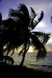 Belizean sunset Stock Photos