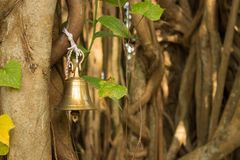 Bell on the banyan tree Royalty Free Stock Image