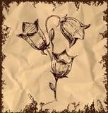 Bell-Blume auf Weinlesehintergrund Lizenzfreies Stockfoto