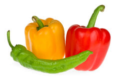 Bell and chili peppers. Isolated on the white background Royalty Free Stock Photo