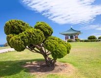 Bell coréenne de pagoda et de stationnement d'amitié Photo stock