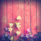 Bell flowers on a pink background. Vintage colors Royalty Free Stock Photos