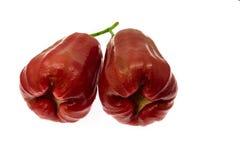 Bell fruit or rose apple Stock Photo