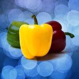 Bell gialla Pepperc - quadrato - strutturato Fotografia Stock Libera da Diritti