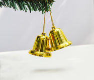 Bell hang on Christmas tree Stock Images