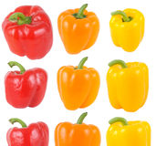 Bell Pepper. S isolated on white Stock Photos