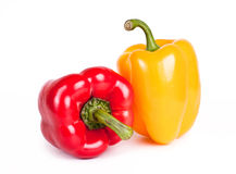 Bell pepper. Two tasty bell peppers on white background Stock Photography