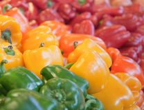 Bell Pepper arrangement Stock Photography