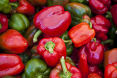 Bell Pepper Assortment Royalty Free Stock Photography