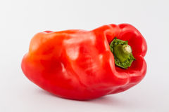 Bell pepper Capsicum annuum. In white background stock photography