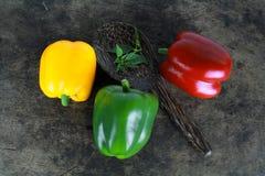 Bell pepper or capsicum, sweet pepper. Fresh bell pepper or capsicum, sweet pepper royalty free stock images