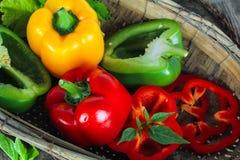 Bell pepper or capsicum, sweet pepper. Fresh bell pepper or capsicum, sweet pepper royalty free stock photos