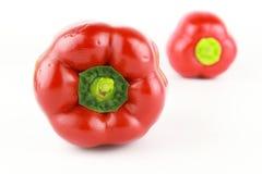 Bell pepper or capsicum, sweet pepper. Fresh bell pepper or capsicum, sweet pepper stock photo
