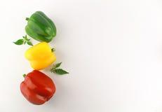 Bell pepper or capsicum, sweet pepper. Fresh bell pepper or capsicum, sweet pepper stock photos