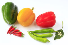 Bell pepper and chili. Different peppers and chilis before white background Stock Photo