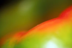 Bell pepper. Close up of colored bell pepper Stock Images