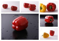Bell pepper collage Stock Image