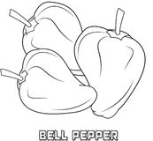 Bell pepper coloring page Royalty Free Stock Photography