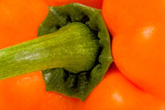 Bell pepper detail Stock Photography