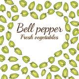 Bell pepper heart. Vector veggies Royalty Free Stock Image