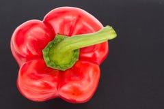 Bell pepper  isolated on black / sweet pepper / capsicum  on black backg Royalty Free Stock Photos