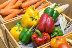 Bell pepper. Many pepper in cartons.This cartons made from paper stock photography