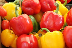 Bell pepper mix Stock Images