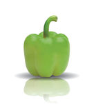 Bell pepper with reflection Royalty Free Stock Image
