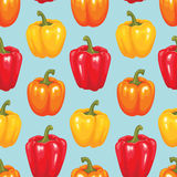 Bell pepper seamless patter Royalty Free Stock Photography