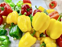 Bell pepper or sweet pepper stock images