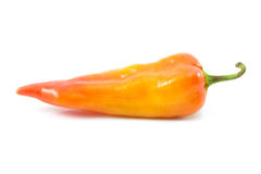 Bell pepper or sweet pepper. On white back ground Stock Photos