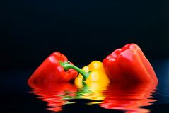 Bell Pepper Trio Stock Image