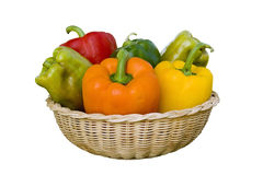 Bell pepper variety basket Stock Images