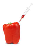 Bell pepper vegetable with injection Stock Image